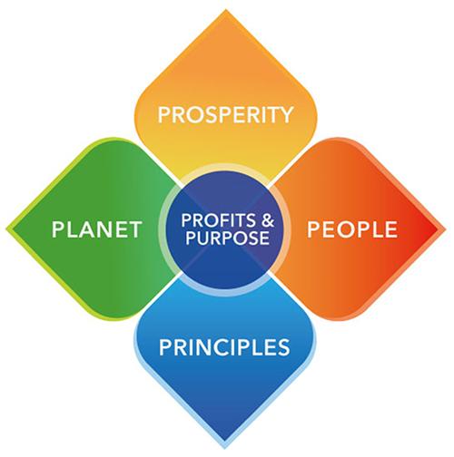 profit_and_purpose